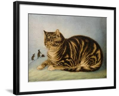 Puss Napping-George Baxter-Framed Giclee Print