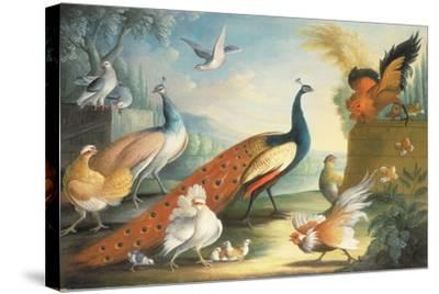 Two Peacocks, Doves, Chickens and a Rooster in a Parkland-Marmaduke Cradock-Stretched Canvas Print