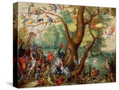Concert of Birds-Jan Van, The Elder Kessel-Stretched Canvas Print