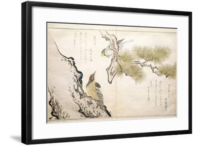 P.332-1946 Vol.1 F.3 Hawfinch and a Woodpecker, from an Album 'Birds Compared in Humorous Songs',…-Kitagawa Utamaro-Framed Giclee Print