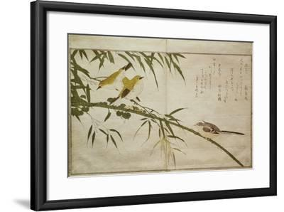 P.332-1946 Vol.2 F.6 Long-Tailed Tit and Three White Eyes, from an Album 'Birds Compared in…-Kitagawa Utamaro-Framed Giclee Print