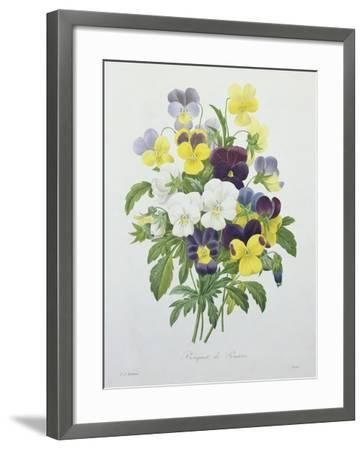 Bouquet of Pansies, Engraved by Victor, from 'Choix Des Plus Belles Fleurs', 1827-Pierre-Joseph Redout?-Framed Giclee Print
