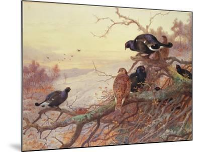 Blackgame in Winter-Archibald Thorburn-Mounted Giclee Print