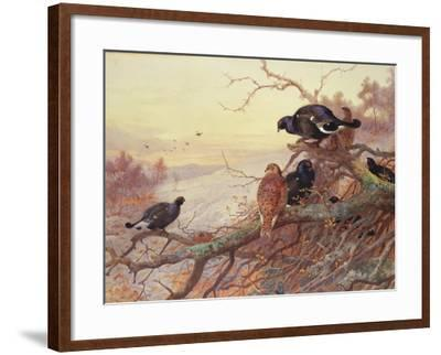Blackgame in Winter-Archibald Thorburn-Framed Giclee Print