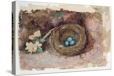 Birds Nest, 1863-John Atkinson Grimshaw-Stretched Canvas Print