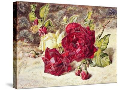 One White and Two Red Roses and Buds-Helen Cordelia Coleman Angell-Stretched Canvas Print
