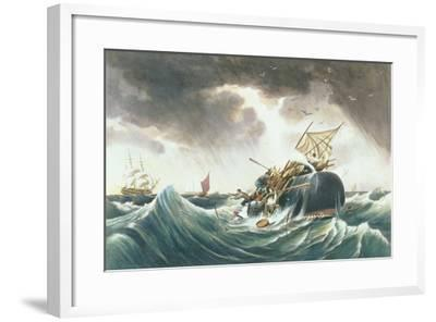 The Sperm Whale in a Flurry from 'The Whale Fishery', Published by Currier and Ives-Louis Ambroise Garneray-Framed Giclee Print