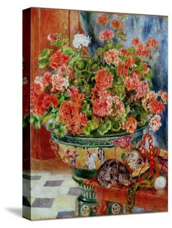 Geraniums and Cats, 1881-Pierre-Auguste Renoir-Stretched Canvas Print