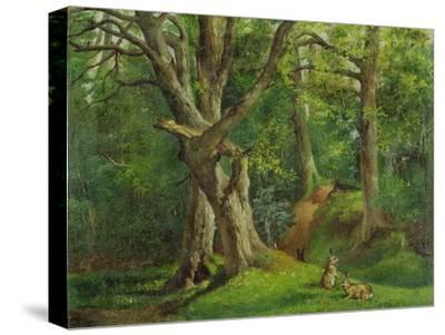 Woodland Scene with Rabbits, 1862-Hubert von Herkomer-Stretched Canvas Print