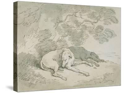 Greyhounds Asleep-Thomas Rowlandson-Stretched Canvas Print