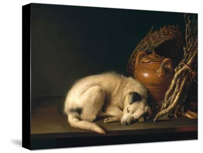 A Sleeping Dog with Terracotta Pot, 1650-Gerrit or Gerard Dou-Stretched Canvas Print