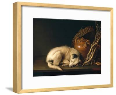 A Sleeping Dog with Terracotta Pot, 1650-Gerrit or Gerard Dou-Framed Giclee Print