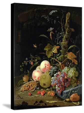 Still Life of a Forest Floor-Abraham Mignon-Stretched Canvas Print
