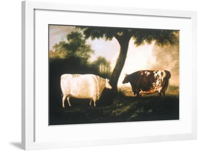 Two Shorthorn Cattle, 1806-Thomas Harrington Wilson-Framed Giclee Print