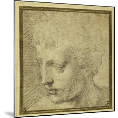 Head of a Boy, Nearly in Profile to the Left-Parmigianino-Mounted Giclee Print