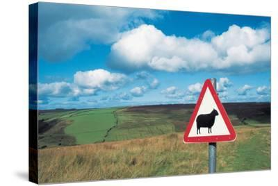Animal Sign Board--Stretched Canvas Print