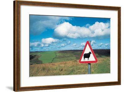 Animal Sign Board--Framed Photographic Print