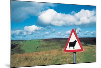 Animal Sign Board--Mounted Photographic Print