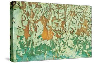 Paint and Fibres on Wood--Stretched Canvas Print