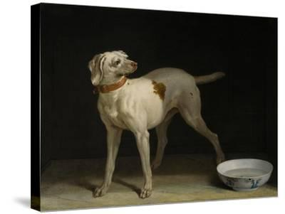 Dog, 1751-Jean-Baptiste Oudry-Stretched Canvas Print