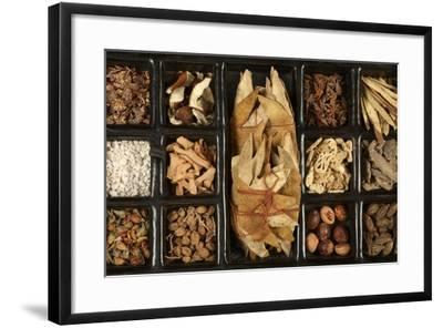 Chinese Medicinal Herbs--Framed Photographic Print
