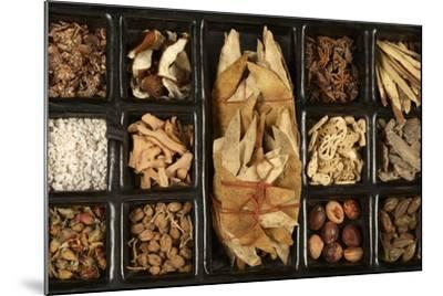 Chinese Medicinal Herbs--Mounted Photographic Print