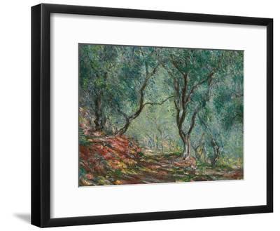 Olive Trees in the Moreno Garden, 1884-Claude Monet-Framed Premium Giclee Print