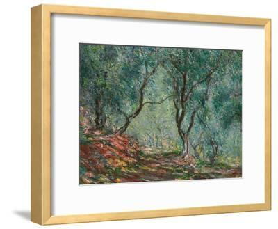 Olive Trees in the Moreno Garden, 1884-Claude Monet-Framed Giclee Print
