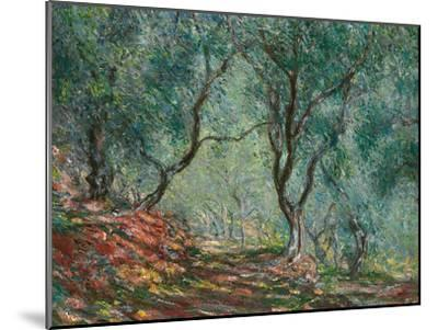 Olive Trees in the Moreno Garden, 1884-Claude Monet-Mounted Giclee Print