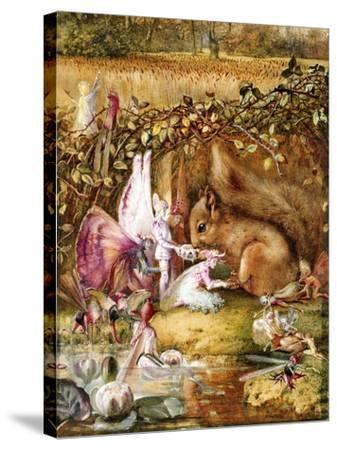 The Wounded Squirrel-John Anster Fitzgerald-Stretched Canvas Print