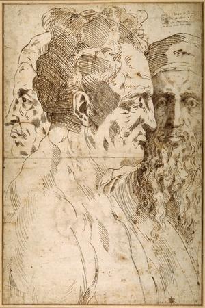 Three Male Heads Juxtaposed-Baccio Bandinelli-Stretched Canvas Print