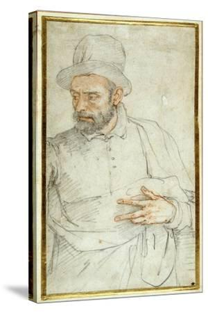 A Bearded Man, Half Length, Standing Dressed for the Street-Federico Zuccaro-Stretched Canvas Print