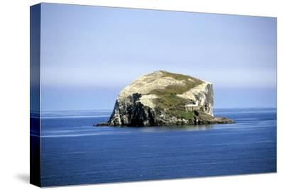 Bass Rock--Stretched Canvas Print