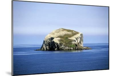 Bass Rock--Mounted Photographic Print