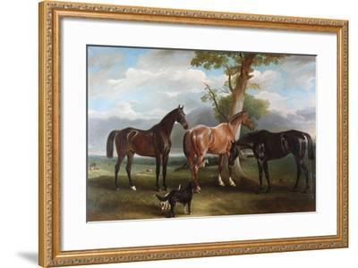 The 6th Duke's Favourite Hunters and Dogs, 1857-John E^ Ferneley-Framed Giclee Print