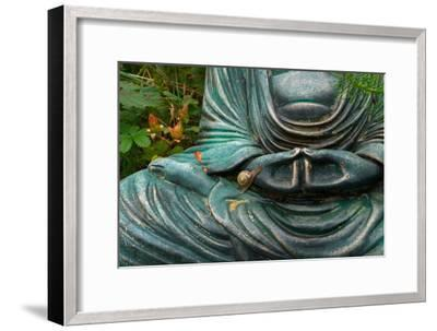 Time to Slow Down--Framed Photographic Print