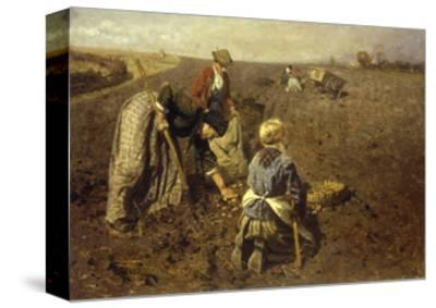 The Potato Harvest-Herman Hartwich-Stretched Canvas Print