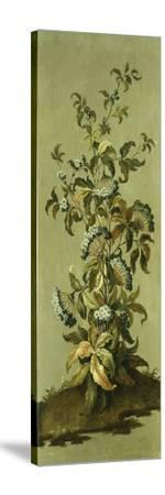 Decorative Panels with Flowers-Jean Baptiste Pillement-Stretched Canvas Print
