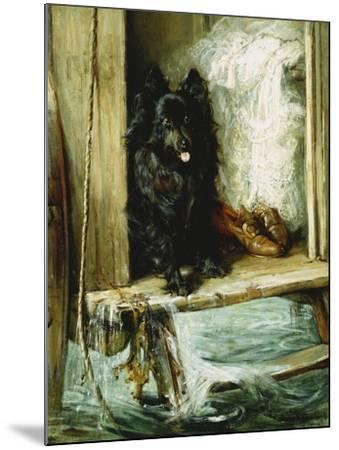Left in Charge - a Black Pomerain on the Steps of a Bathing Machine-Philip Eustace Stretton-Mounted Giclee Print