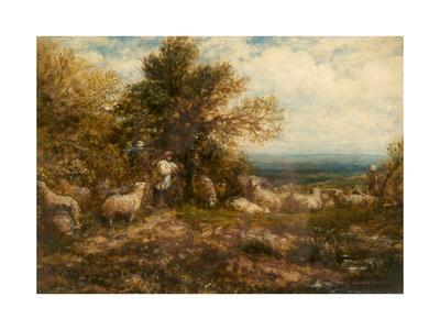 Sheep at Rest; Minding the Flock, C.1840-80-John Linnell-Framed Giclee Print