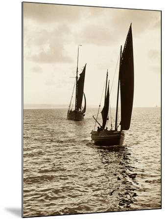 Newlyn Fishing Boats--Mounted Photographic Print