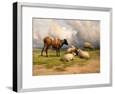 A Cow and Five Sheep, 1887-Thomas Sidney Cooper-Framed Giclee Print