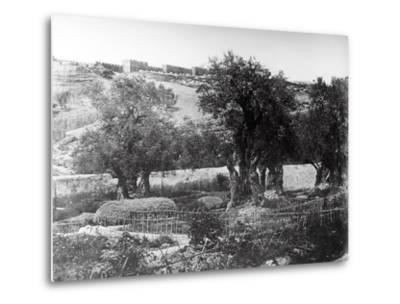Gethsemane, 1857-James Robertson and Felice Beato-Metal Print