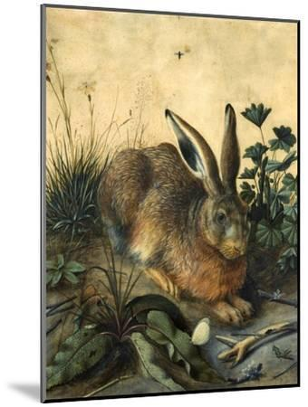 Hare-Hans Hoffmann-Mounted Giclee Print