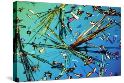 Ampicillin Antibiotic Drug Crystals-John Walsh-Stretched Canvas Print