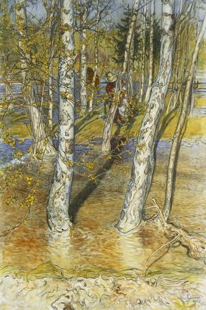 Spring Flood-Carl Larsson-Stretched Canvas Print