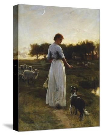 A Shepherdess with her Dog and Flock in a Moonlit Meadow-George Faulkener Wetherbee-Stretched Canvas Print