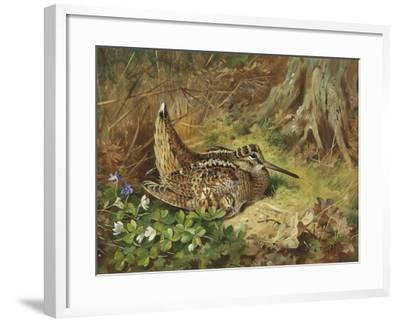 A Woodcock and Chicks-Archibald Thorburn-Framed Giclee Print