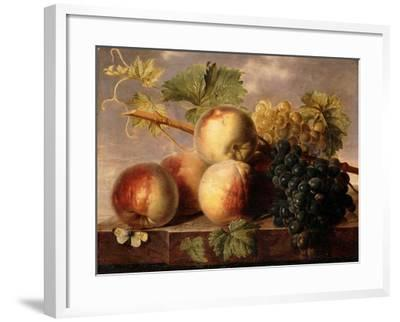 Peaches and Grapes with a Cabbage White on a Marble Ledge-Jan Frans Dael-Framed Giclee Print