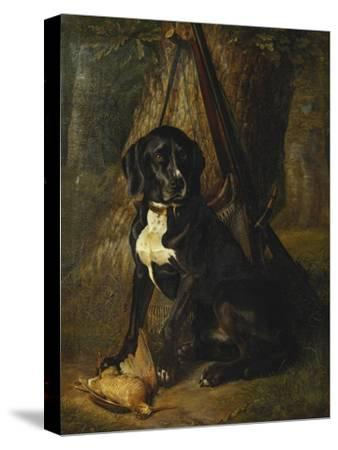 A Gun Dog with a Woodcock-William		 Hammer-Stretched Canvas Print